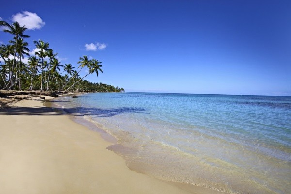 Plage - Grand Bahia Principe El Portillo All Inclusive 5* Saint Domingue Republique Dominicaine