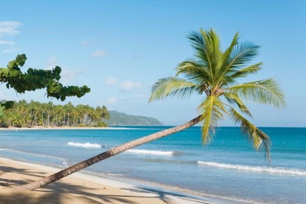 Plage - Club Kappa Club Viva Wyndham Samana 5* Saint Domingue Republique Dominicaine