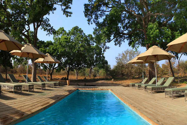 Piscine - Lodge Fathala Wildlife Reserve 5*