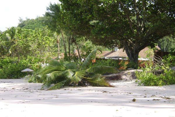 Plage - Hôtel Banyan Tree Seychelles 5* Mahe Seychelles