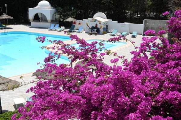 Piscine - Hôtel Menara 4* Tunis Tunisie