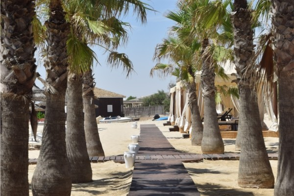 Plage - Oceana Palace 5* Tunis Tunisie