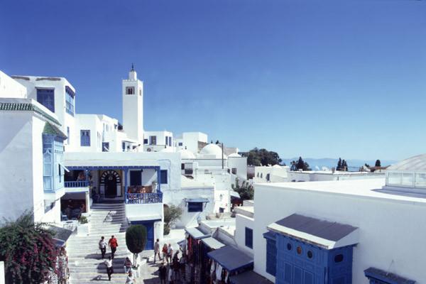Ville - Hôtel Laico Hammamet 5* Tunis Tunisie
