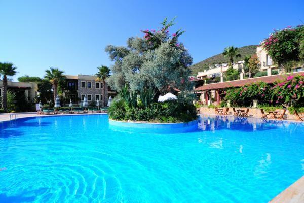 Piscine - Hôtel Zeytinada Hotel 4* Bodrum Turquie