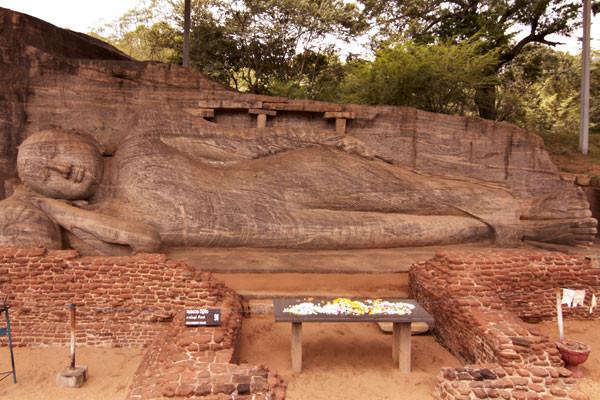 Photo n° 11 Circuit Merveilles du Sri Lanka