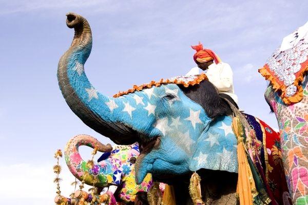 Photo n° 9 Circuit Merveilles du Sri Lanka