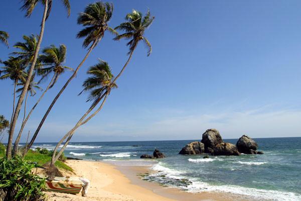Photo n° 24 Combiné circuit et hôtel Sri Lanka Authentique 3* et Extension balnéaire