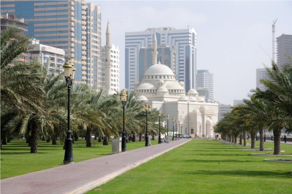 Dubai expatriés datant