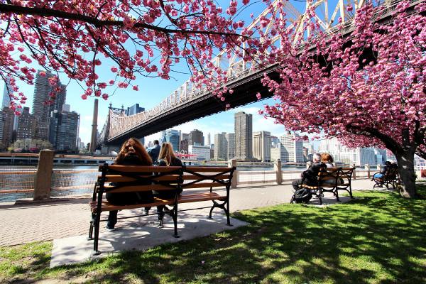 Photo n° 3 Circuit Essentiel de New York 4*