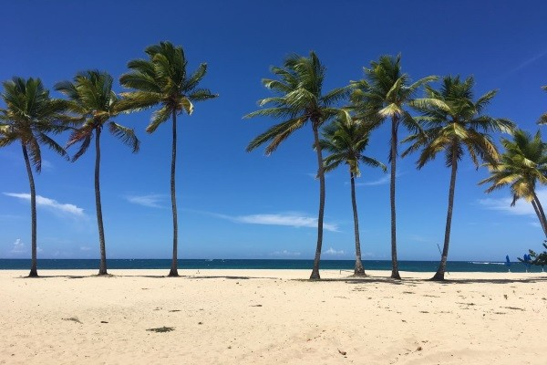 Hôtel Emotions Playa Dorada by Hodelpa 4* - voyage  - sejour