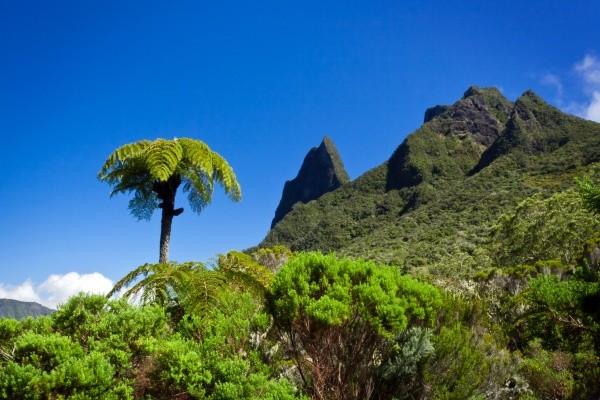 Autotour Découverte Réunion 2* + Île Maurice à l'hôtel Le Palmiste 3*