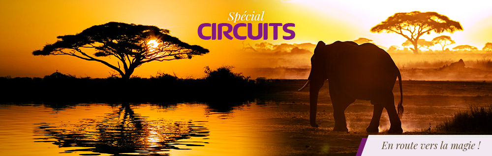 special-circuits