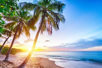 Guide de voyage La Guadeloupe