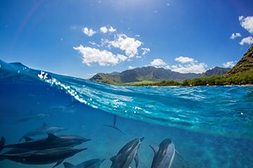 Guide de voyage Réunion