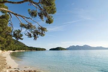 Bons Plans Visite réserve naturelle de S'Albufera Des Grau à Minorque