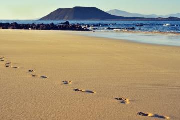 Bons Plans Parc Naturel de Corralejo à Fuerteventura